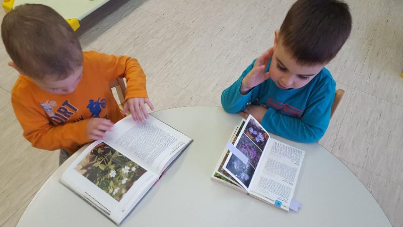 iskanje-rastlin-v-knjigah