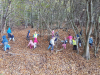 simbolna-igra-v-gozdu