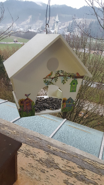 hranjenje-ptic-v-novi-ptic48dji-hic5a1ici-pred-oknom-igralnice